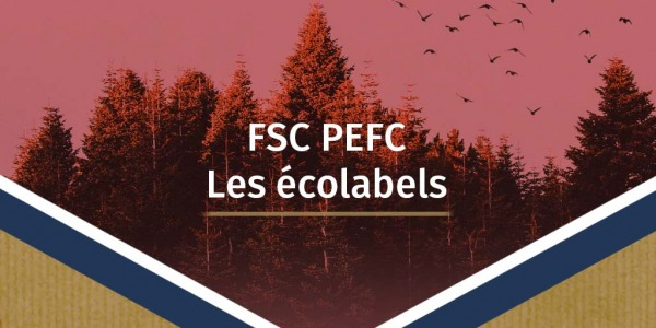 Made in Kraft et la norme FSC - la déco responsable